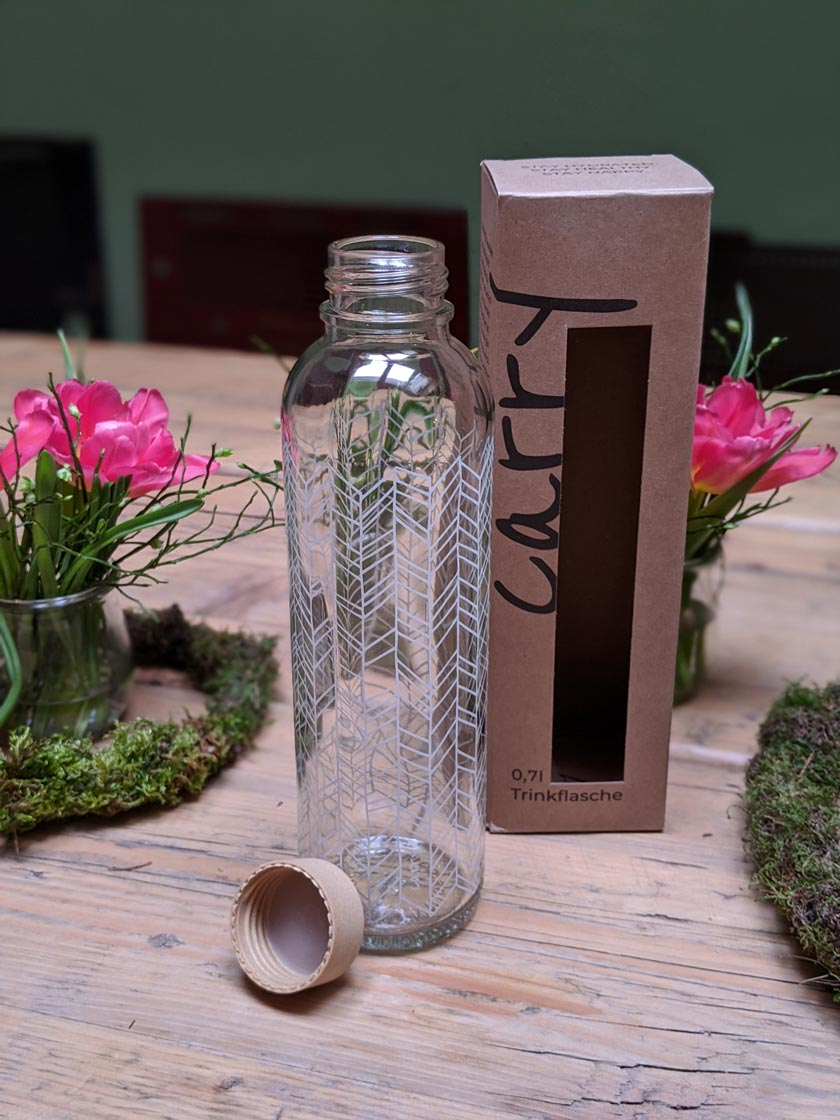 carry-bottles-glas-trinkflasche-750ml-structure-of-life-blog
